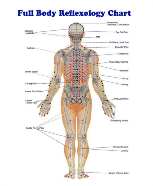 Full Body Reflexology Chart Template