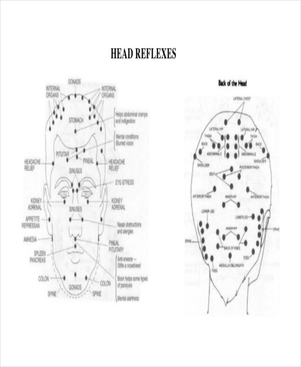Head Reflexology Chart Template