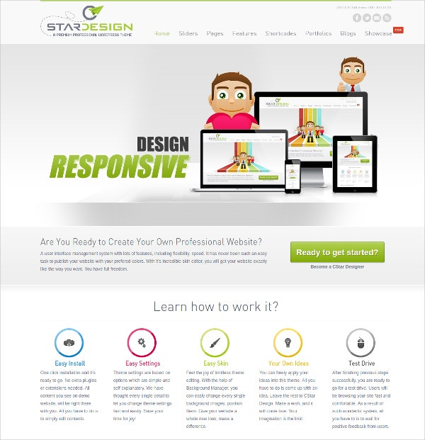 Professional Design WordPress Theme $49