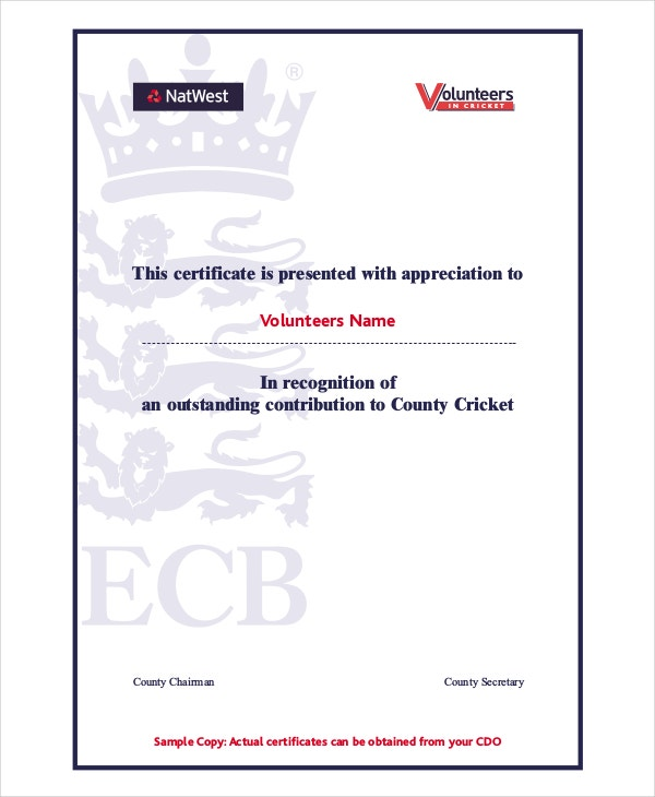 High Quality Cricket Volunteer Certificate Template