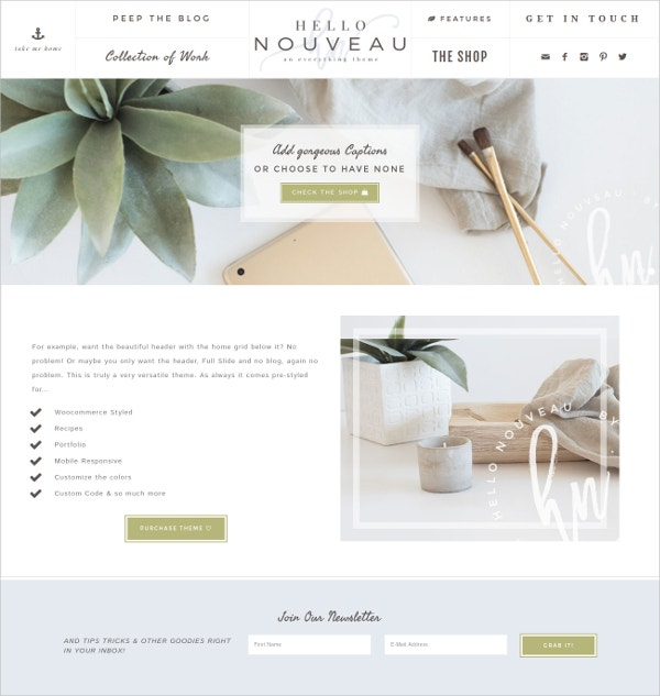 Boutique WordPress Blog Genesis Theme $75