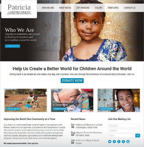 Premium Non Profit WordPress Website Theme