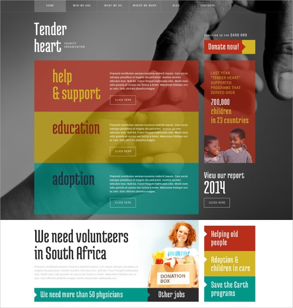 Charity, Non Profiot & Adoption WordPress Theme $75
