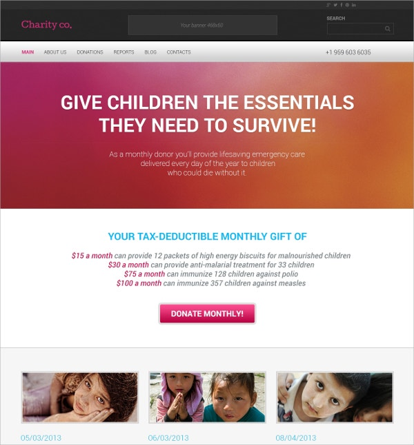 Simple Charity & Non Profit WordPress Theme $75