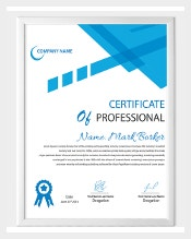 Professional Certificate Templates Certify That Person Is Capable Of  Carrying Out A Particular Task As He Is Specialized In A Task As Embedded  In The ...  Microsoft Certificate Maker