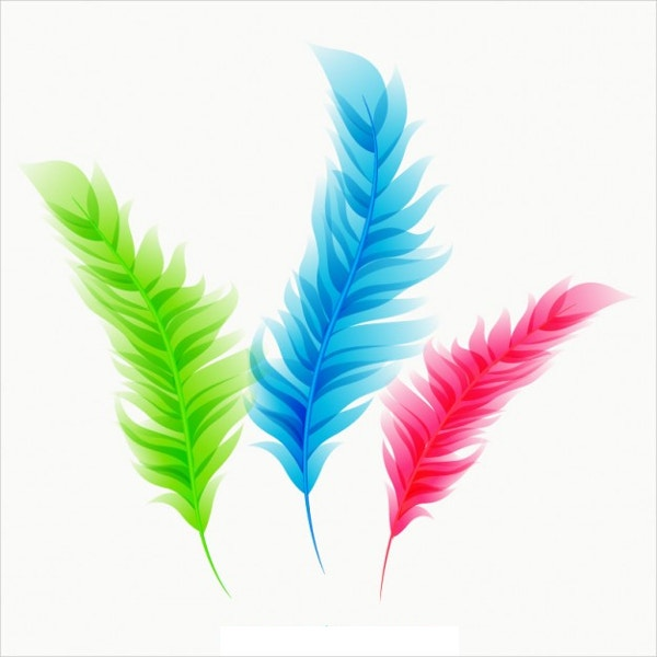 Colorful Feathers Free Vector