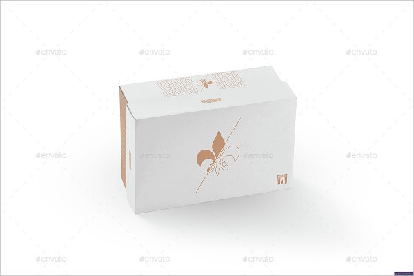 branding shoe box template