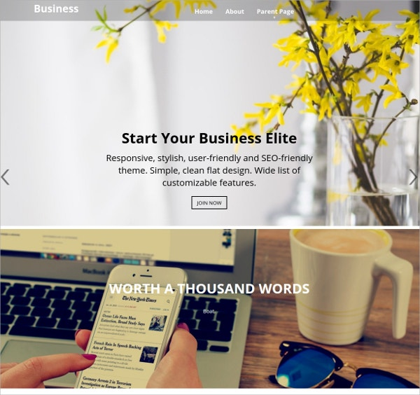 Fully Responsive Business WordPress Website Theme