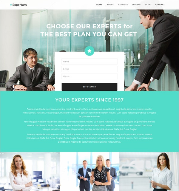 Business One Page WordPress Website Theme $39