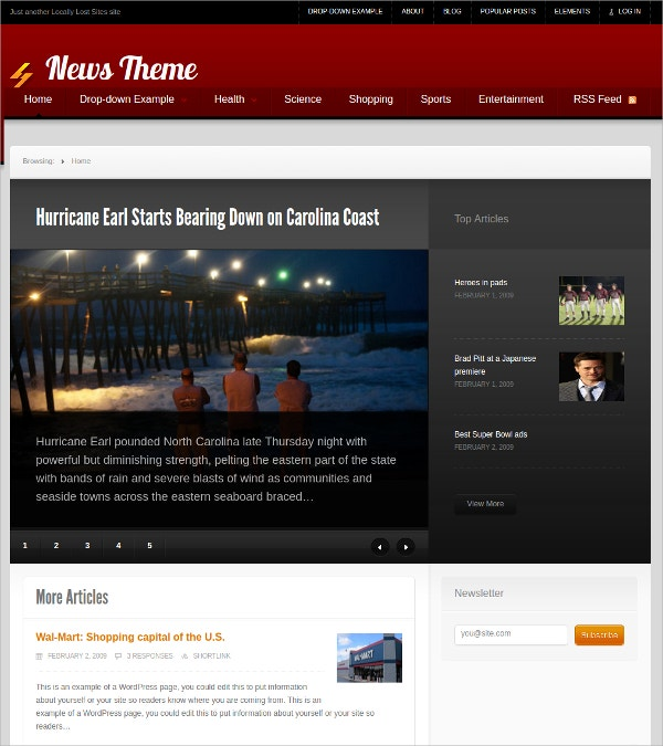 Sample News WordPress Theme