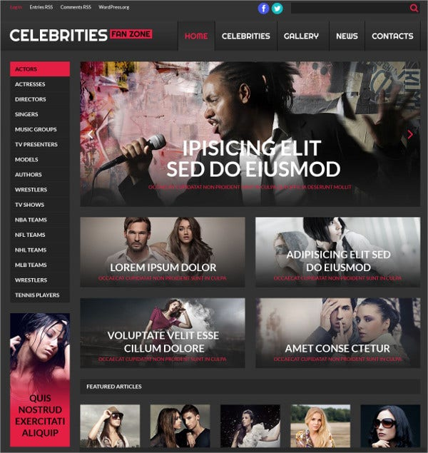 Online Cinema Celebrities News WordPress Theme $75