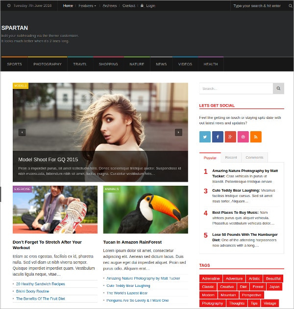 Premium News Magazine & Blog WordPress Theme $49
