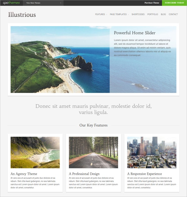 stunning free wordpress theme
