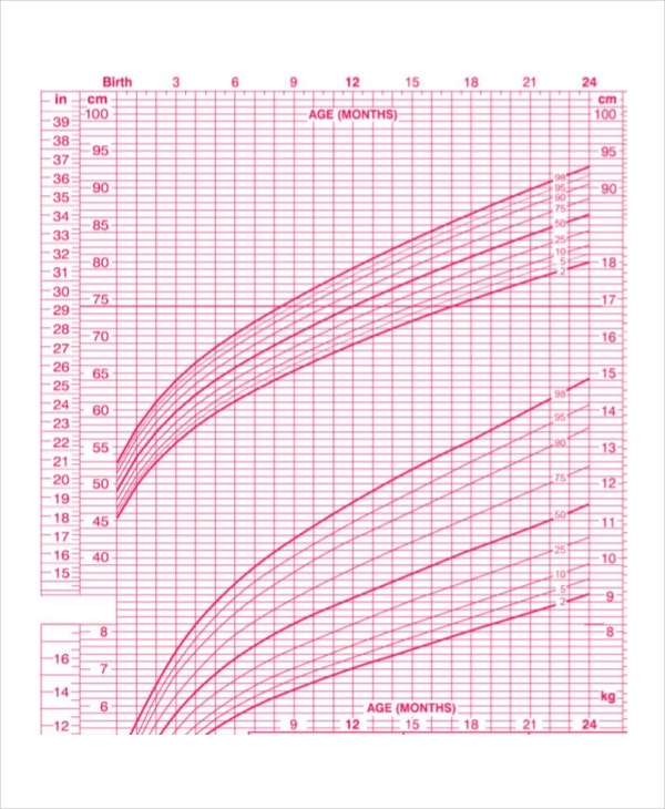 Breastfed Baby Growth Chart Template   Free Excel Pdf Documents
