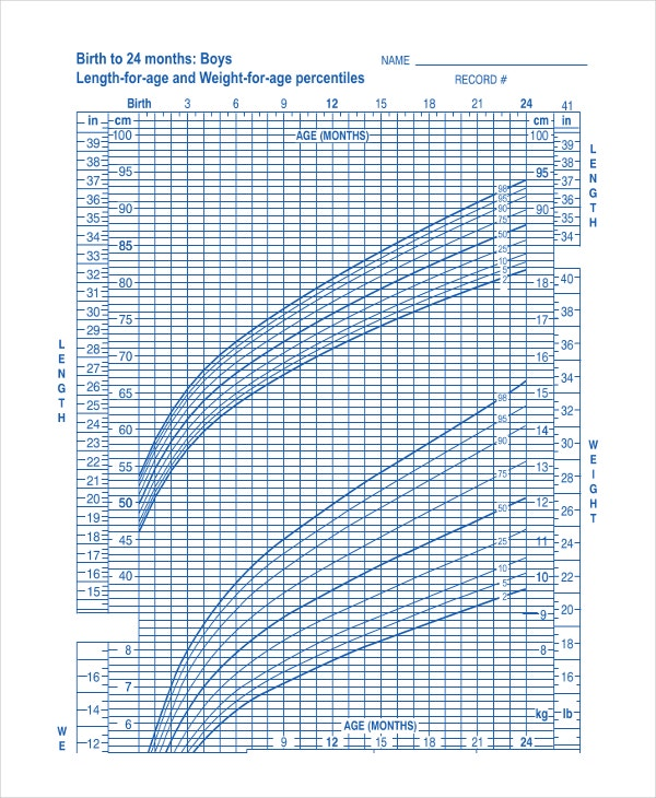 Baby Boy Growth Chart Templates  Free Sample Example Format