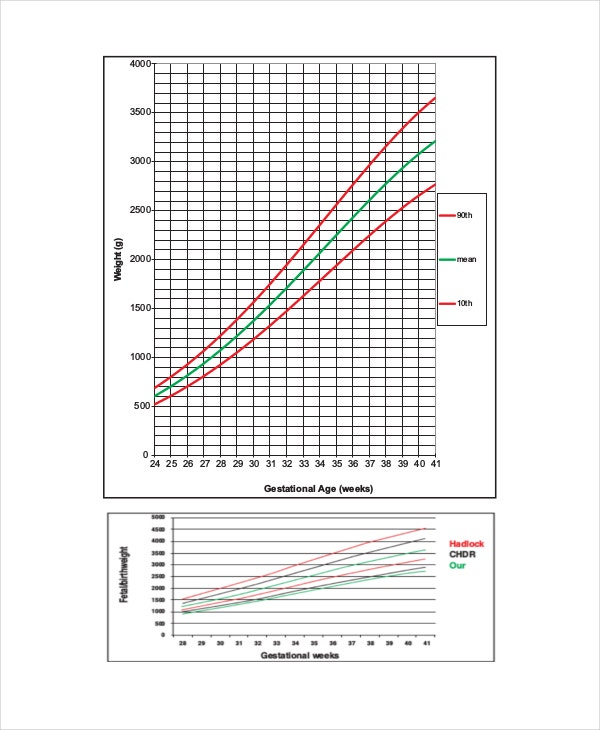Unborn Baby Growth Chart Templates  Free Sample Example Format