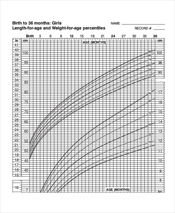 Baby Weight Growth Chart Templates  Free Sample Example Format