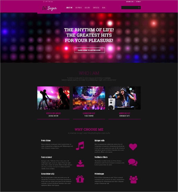 DJ Party WordPress Website Theme $75
