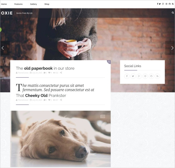 Lifestyle Responsive WordPress Blog Theme $59