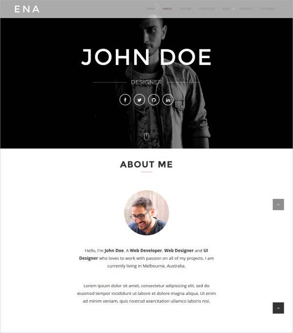 Professional Portfolio WordPress Theme $49