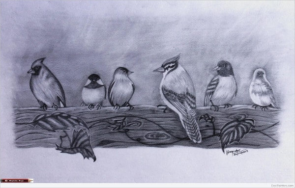 Pencil Drawing Of Small Birds