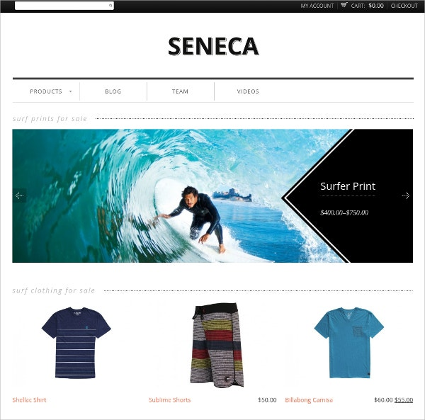 eCommerce Blog WordPress Theme
