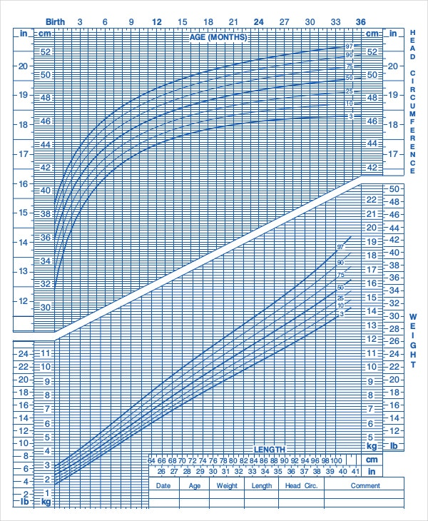 Baby Growth Chart Week By Week Templates  Free Sample Example
