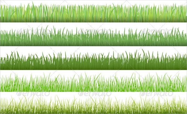 nature grass pattern