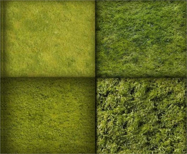 10 Grass Texture Pattern