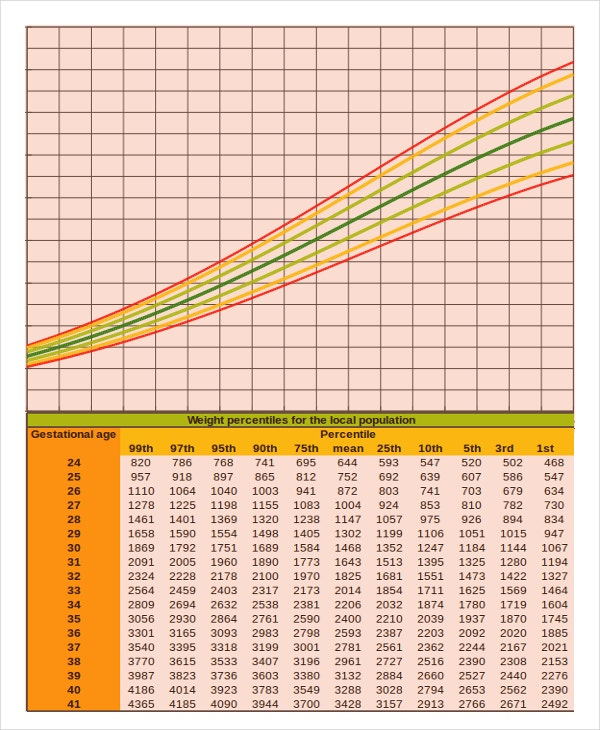 Baby Growth Chart Calculator 6 Free Excel PDF Documents – Girls Growth Chart Template