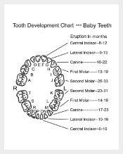 Teeth growth2