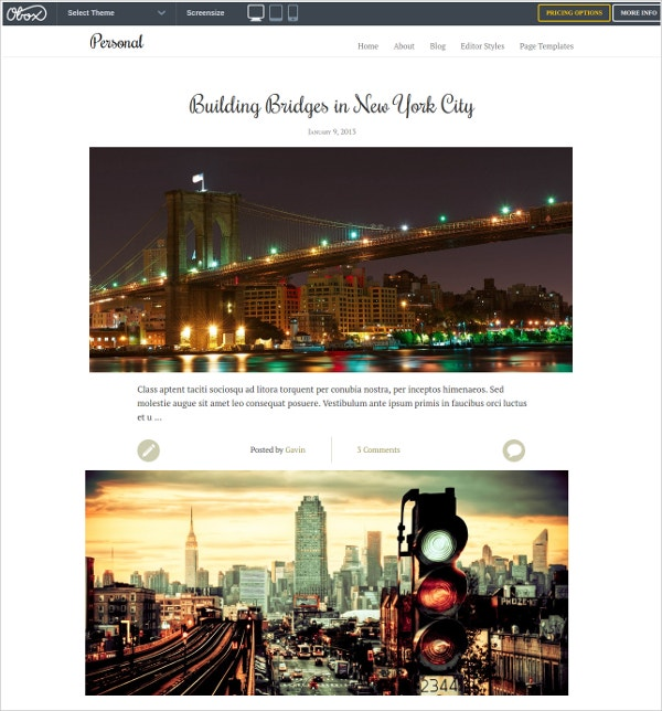 Premium Personal WordPress Website Theme