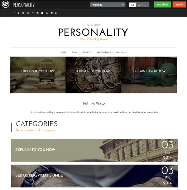 personal blog wordpress website theme 39