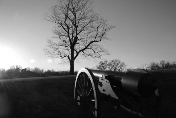 cannon on vicksburg battlefield