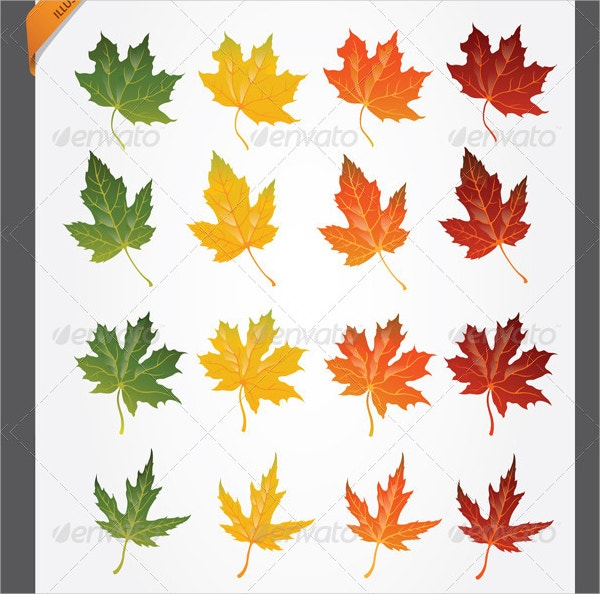 Maple Leaf Pattern