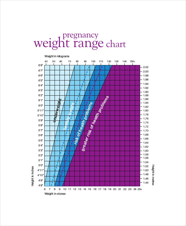 baby weight growth chart during pregnancy1
