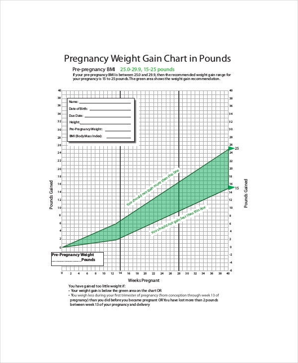 Baby Weight Charts During Pregnancy Template   Free Pdf