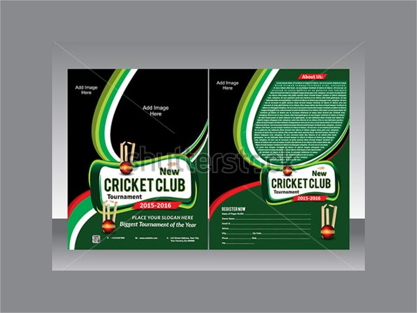 Cricket Flyer Template Vector Illustration