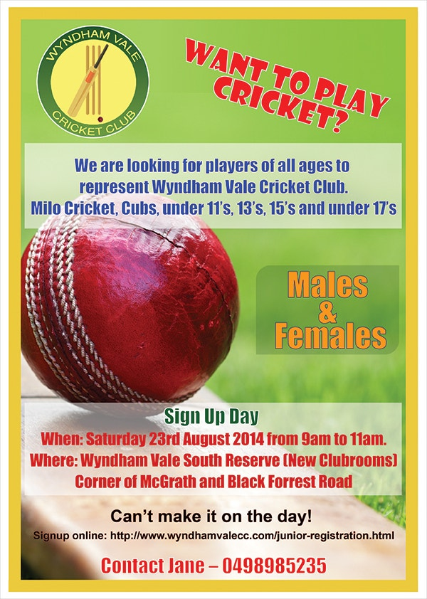 Womens Cricket Flyer Template
