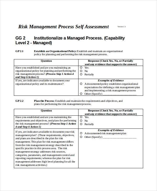 Self assessment template 7 word pdf documents download for Risk control self assessment template