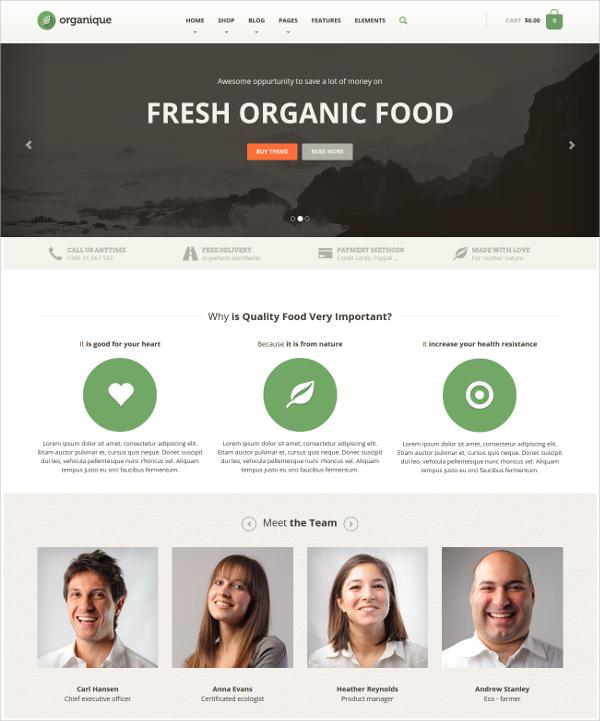 Organic Food & Products WordPress Theme