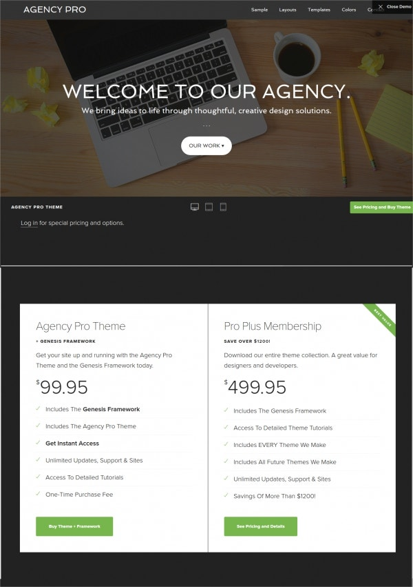Professional Agency WordPress Theme