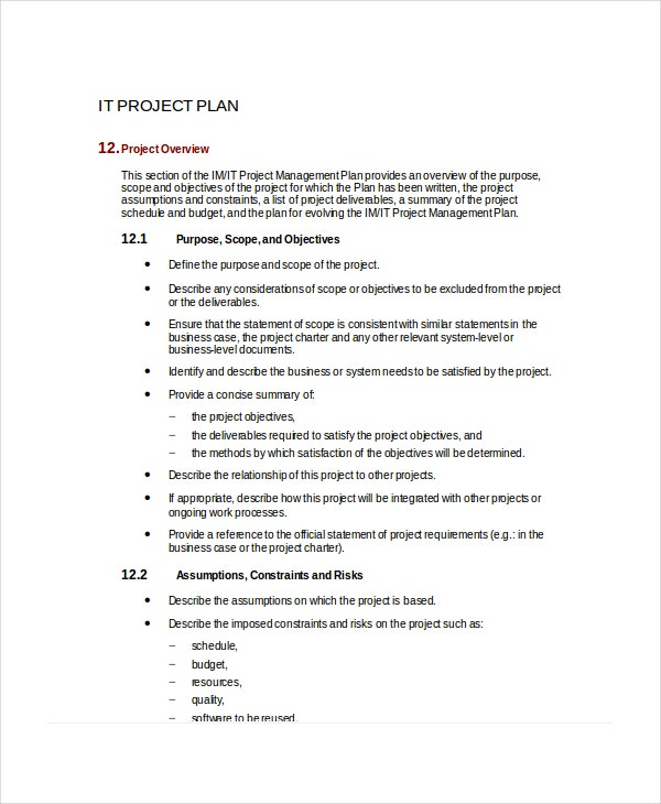 it project plan template in microsoft word