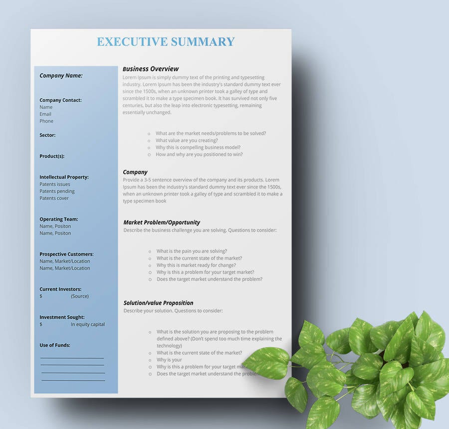 9  free executive summary templates