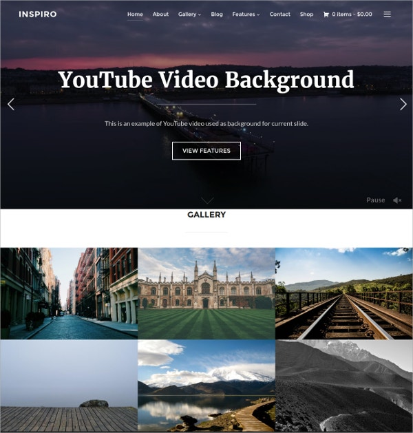 Professional Photography Website Theme $69