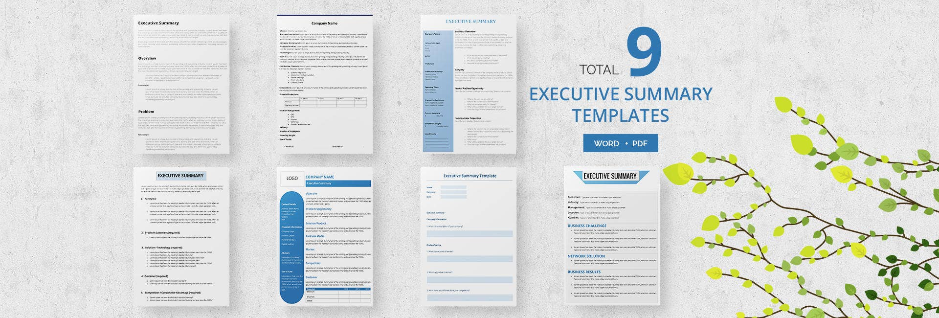 9 Free Executive Summary Templates Business Industry