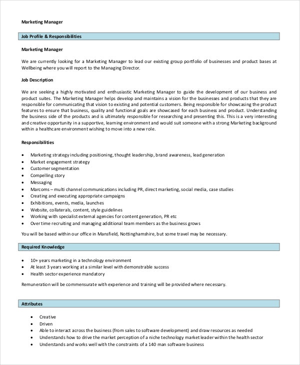 13 job description templates free sample example format - Software Sales Manager Job Description