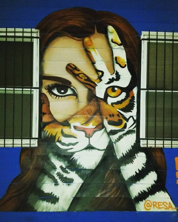 Eye of the Tiger Graffiti Art