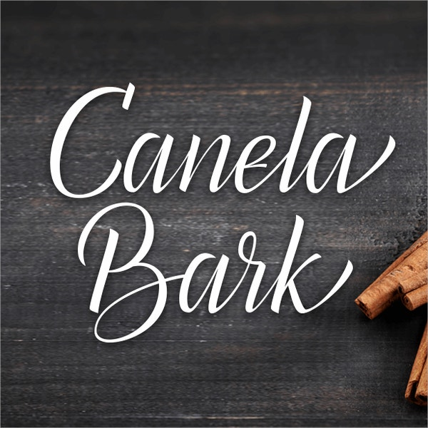 canela bark bold font