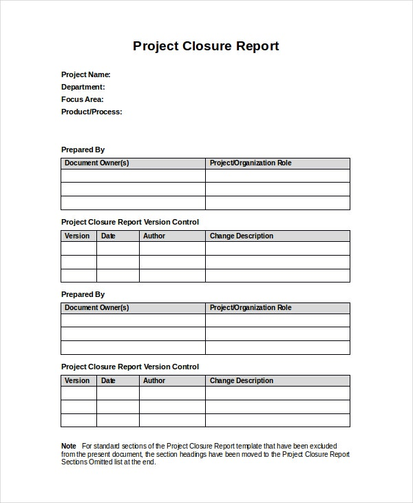 project review report pdf dsdm
